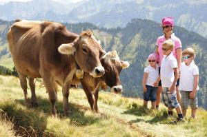 Ferienhof Schweizer, Farm stays  Schwarzenberg im Bregenzerwald - big - 37