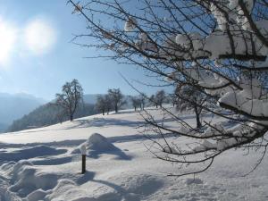 Ferienhof Schweizer, Farm stays  Schwarzenberg im Bregenzerwald - big - 27