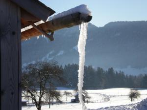 Ferienhof Schweizer, Farm stays  Schwarzenberg im Bregenzerwald - big - 53