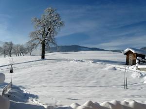 Ferienhof Schweizer, Farm stays  Schwarzenberg im Bregenzerwald - big - 39