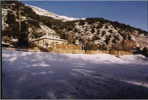 Cabañas Jimera de Líbar, Vidiecke domy  Jimera de Líbar - big - 9