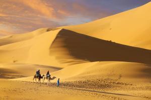 Camel Trek Bivouac, Zelt-Lodges  Merzouga - big - 19