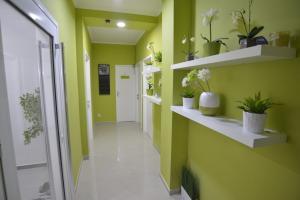 Villa Radica, Affittacamere  Negotino - big - 34