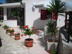 Villa Celeste Apartments Vieste - AbcAlberghi.com