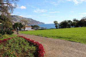 Indigo Madeira - Villa Olga, Apartments  Funchal - big - 2