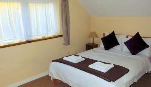 Ivybridge Guest House, Hotely  Fishguard - big - 34