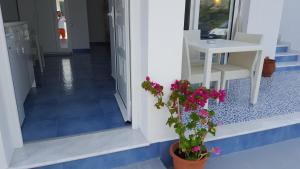 Mediterraneo Apartments, Apartmanhotelek  Arhángelosz - big - 19