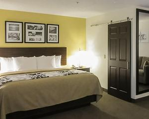 Suite med queen-size-seng og sovesofa
