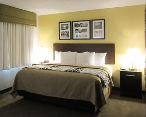 大号床套房 - 带沙发床
