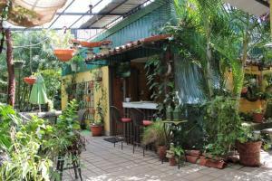 Nirvana Apartments, Aparthotels  Alajuela - big - 18