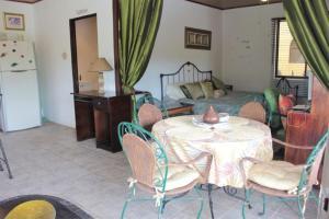 Nirvana Apartments, Aparthotels  Alajuela - big - 7