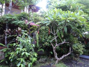 Villa Bhuana Alit, Гостевые дома  Убуд - big - 44