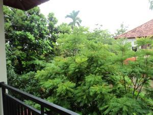 Villa Bhuana Alit, Гостевые дома  Убуд - big - 3