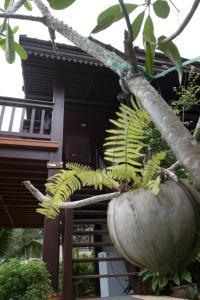 Laem Sila Resort, Курортные отели  Ламаи-Бич - big - 158