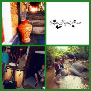 Sapphire Holiday Resort, Panziók  Ratnapura - big - 1