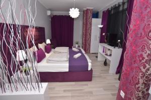 Villa Radica, Affittacamere  Negotino - big - 16