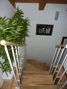 Casa Yami, Guest houses  Padova - big - 14