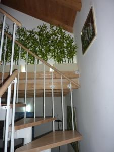 Casa Yami, Guest houses  Padova - big - 18