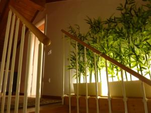 Casa Yami, Guest houses  Padova - big - 26