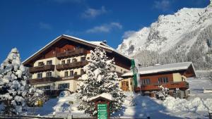 Alpenhof, Bed & Breakfasts  Ramsau am Dachstein - big - 25