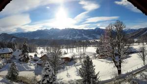 Alpenhof, Bed & Breakfasts  Ramsau am Dachstein - big - 29