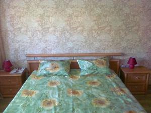 Apartment On Olesia Honchara 7