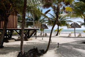 Green Parrot Beach Houses and Resort, Lodge  Maya Beach - big - 20