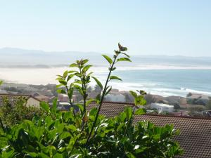 A1 Kynaston Accommodation, Bed and Breakfasts  Jeffreys Bay - big - 67