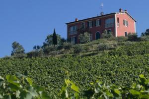 Borgo Condé (20 of 71)