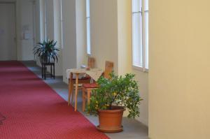 Gästehaus im Priesterseminar Salzburg, Penzióny  Salzburg - big - 55