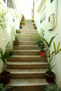 Heather Home Stay, Homestays  Cochin - big - 22