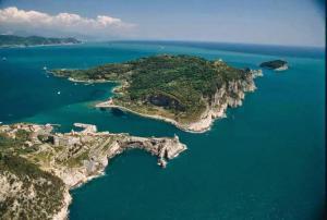 Casa Vacanze Dell'Ulivo - AbcAlberghi.com