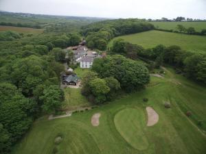 Priskilly Forest Country House, Vidiecke domy  Fishguard - big - 17