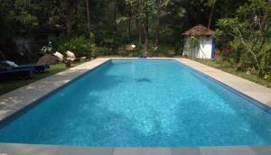 The Secret Garden Goa, Privatzimmer  Saligao - big - 45