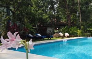 The Secret Garden Goa, Privatzimmer  Saligao - big - 50