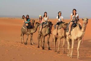 Trans Sahara, Inns  Merzouga - big - 20