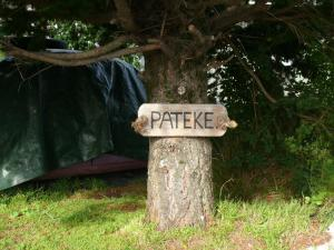Pateke B&B, Bed and breakfasts  Nelson - big - 13