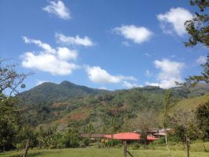 Hostel Casa Chirripo, Guest houses  Herradura - big - 79