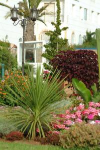 Les jardins de l'Atlantique, Апартаменты  Мохаммедия - big - 11
