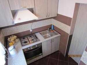 Daily Rent Apartments 1, Apartments  Ivano-Frankivs'k - big - 5