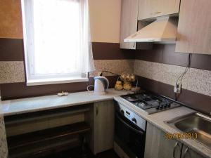 Daily Rent Apartments 1, Apartments  Ivano-Frankivs'k - big - 7