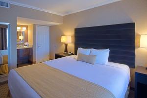 Habitación Doble con cama extragrande - No fumadores