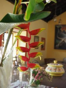 The Secret Garden Goa, Privatzimmer  Saligao - big - 38