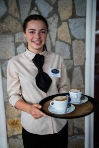 Vineyards Hotel, Hotely  Aheloy - big - 60