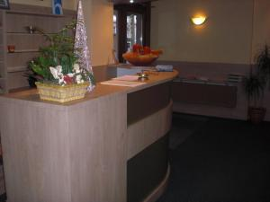 Hotel Restaurant Beau Séjour, Hotels  Diekirch - big - 37