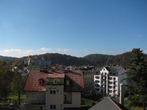 Diamant, Guest houses  Karlovy Vary - big - 98