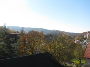 Diamant, Guest houses  Karlovy Vary - big - 96