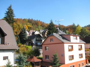 Diamant, Guest houses  Karlovy Vary - big - 97
