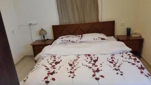 Rose Dead Sea Neve Zohar, Penzióny  Neve Zohar - big - 101