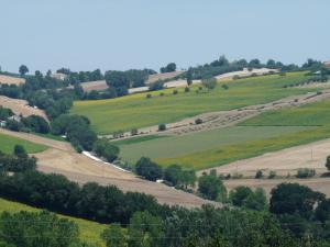 Colline Di Bartolo, Case vacanze  Corinaldo - big - 1